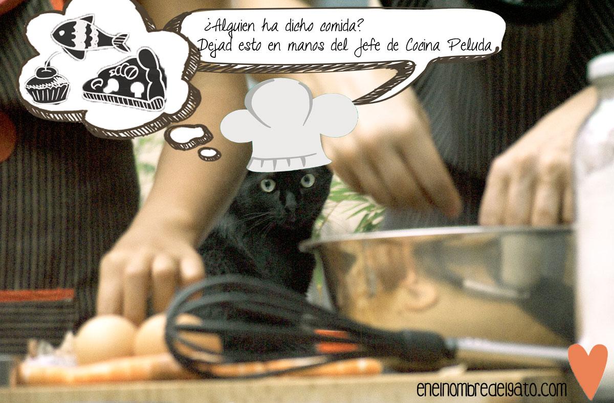 Cabo, Jefe de Cocina Peluda