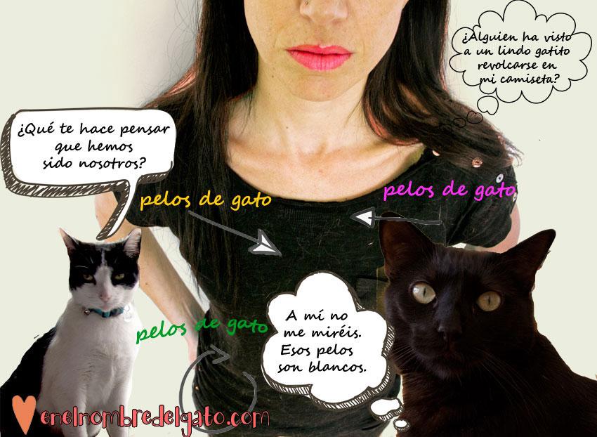 Ropa y pelos de gato, atracción fatal.