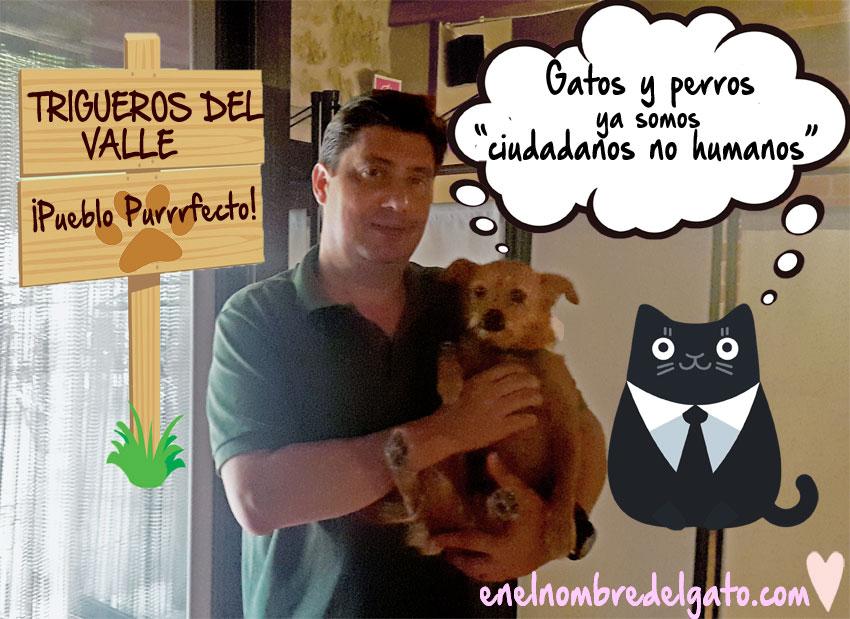 Gatos y perros, ciudadanos no humanos en Trigueros del Valle, España