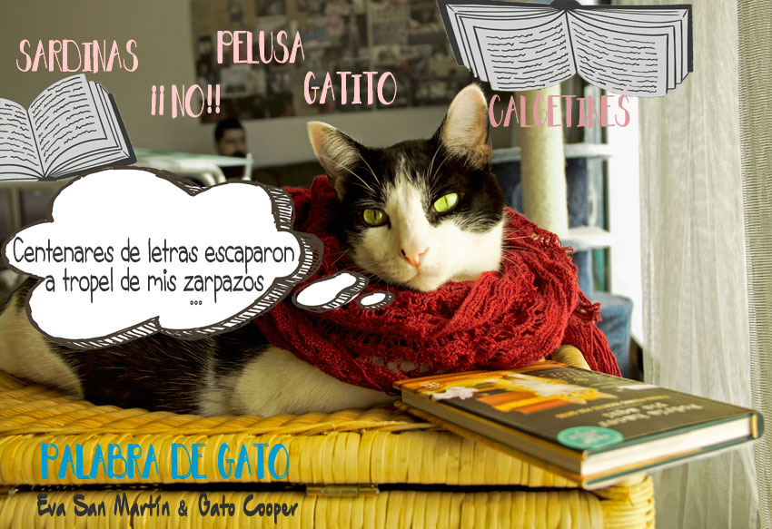 Palabra de Gato, cuentos de gatos