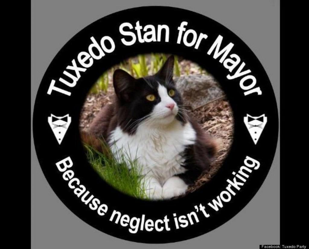 Tuxedo Stan logró captar la atención de los medios durante su su carrera por la alcaldía de Halifax, en Canadá, en 2012.