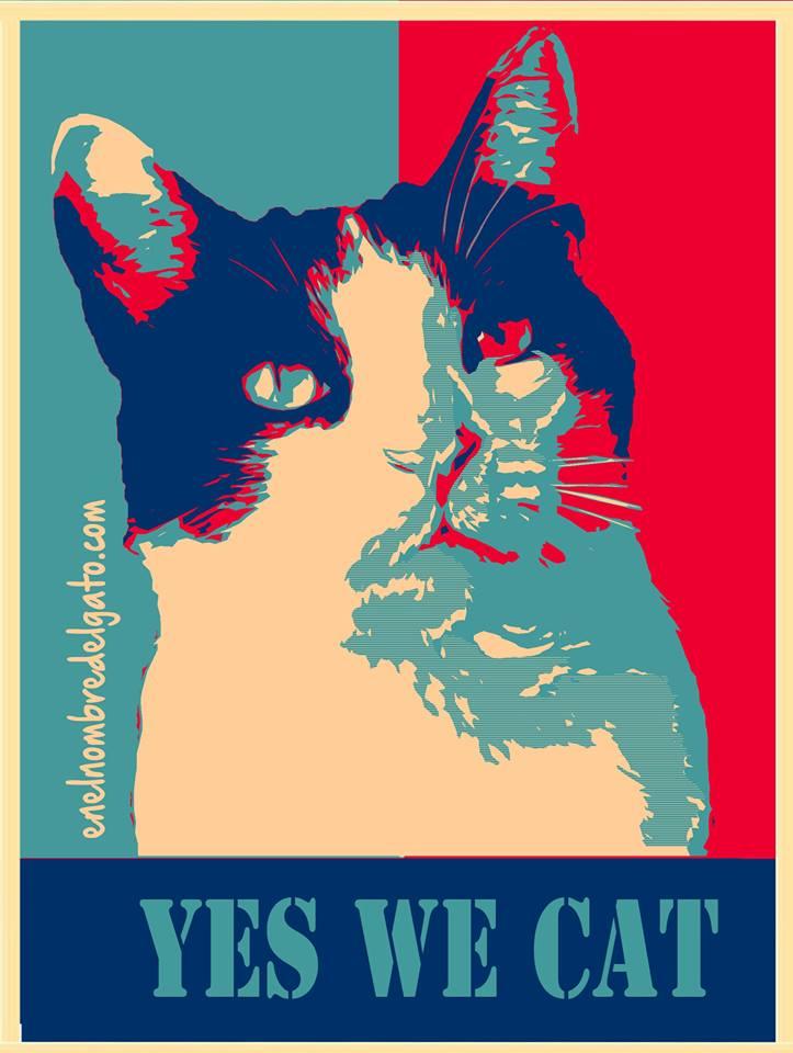 #YesWeCat: Cooper promoviendo un país mejor para #gatos y #perros: legalización del catnip, paseos largos para todos los perros, mucho amor humano, esterilización y sanidad pública para todos los animales.