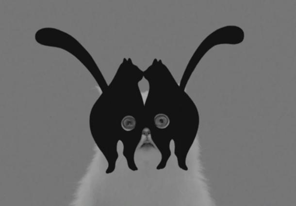 Imagen del vídeo de la banda australiana Midnight Juggernauts, Systematic, expuesto en 'Cómo los gatos dominaron Internet', en el MoMi.