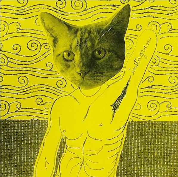 homocats-orgullo-gay
