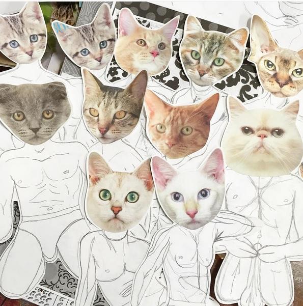 homocats