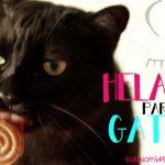 Helado-para-gatos-PARA-FOTOS4