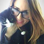 cats-house-casas-gatos-calle