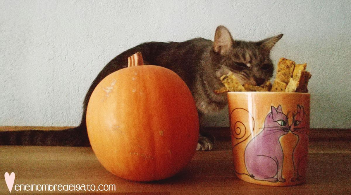 galletas-halloween-gatos-recetas