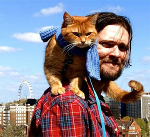 5 razones para leer 'Un gato callejero llamado Bob'