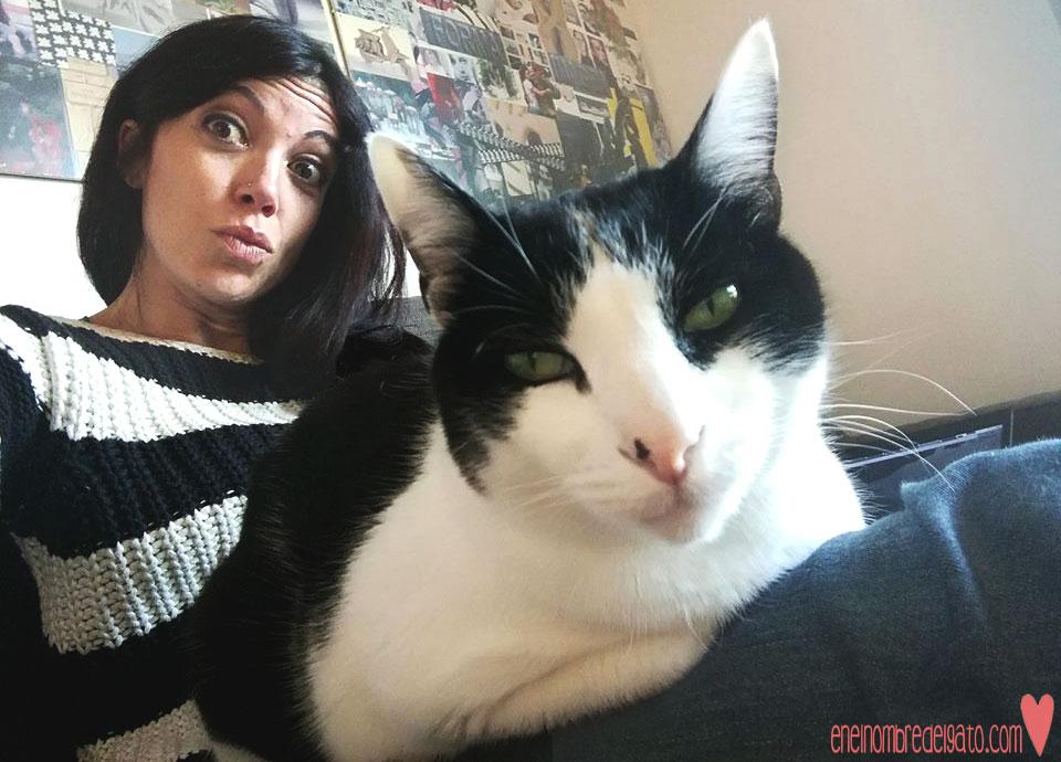 gatos-sonrien-rien