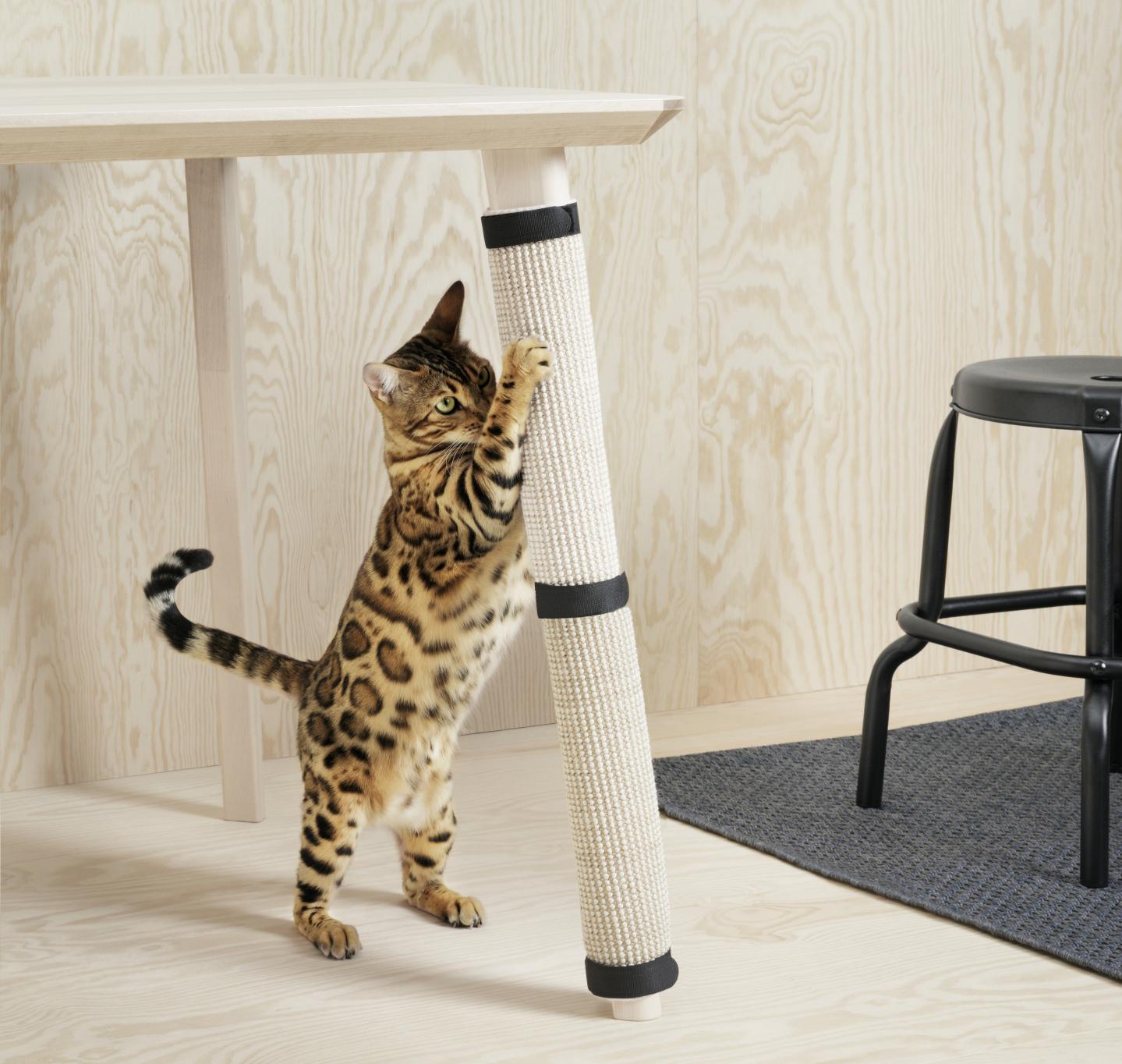 lluvia cazar Moral  Ikea para gatos: los muebles suecos más ronroneantes