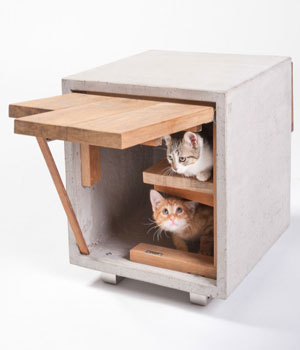Arquitectos para gatos solidarios