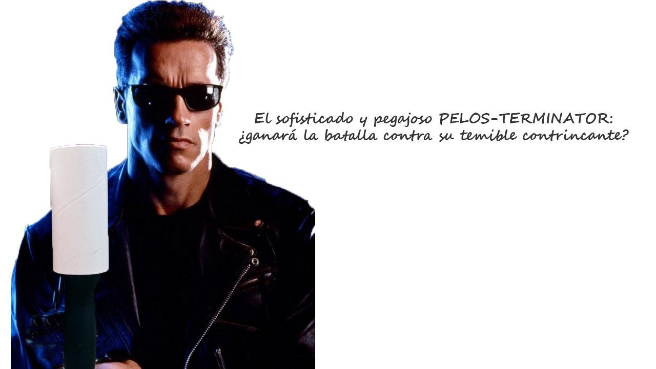Terminator en su combate más peludo. / EN EL NOMBRE DEL GATO