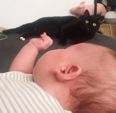 """""""Un caturday purrfecto junto con mi bebé humano preferido"""", Aiko."""